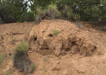 Santa Fe Mud Man